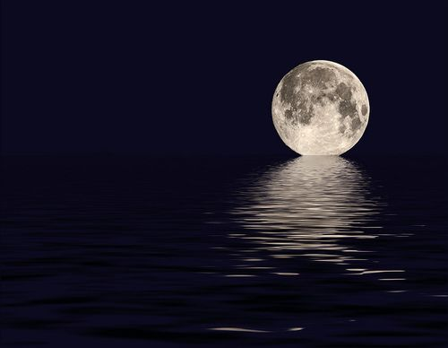 Can't remember when I've seen such a beautiful photo!  I've always loved the moon!  I wanna take photos this good one day!