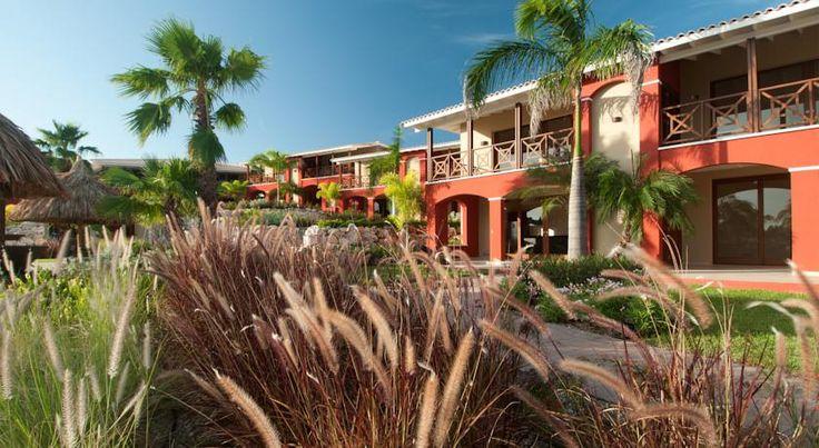 泊ってみたいホテル・HOTEL キュラソー島>ウィレムスタッド>ジャン・ティエル・ビーチからわずか1kmに位置しています>ラ マヤ ビーチ キュラソー(La Maya Beach Curacao)