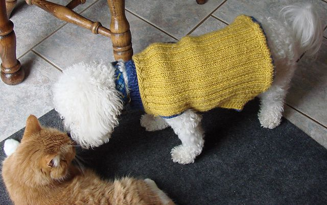 Knitting Coats For Dogs : Ravelry dog coat knitting pattern by westie