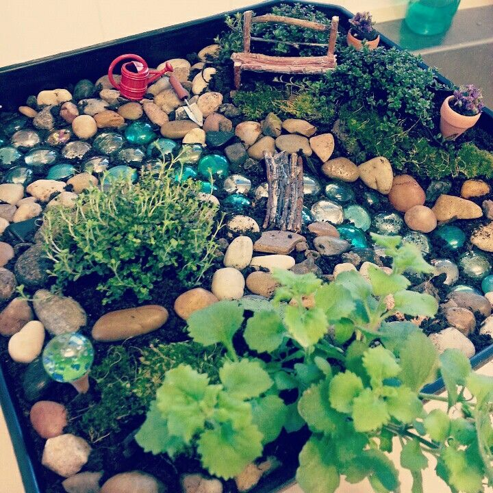 My fairy garden. I had been wanting to try making a fairy garden so I made this one for my mom for her birthday.