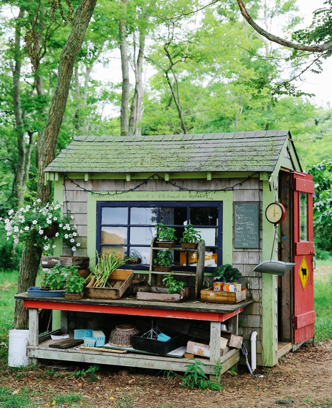Mermaid Farm on Martha's Vineyard has a roadside stand where you can pick up fresh veggies, berries, raw milk, and cheese. Make sure to try their mango lassi.