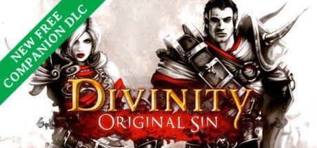 Divinity: Original Sin (PC)