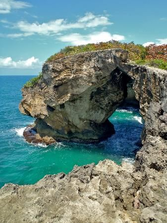 $2 parking . I want to go here! 45 min drive from San Juan  Small cave with beautiful beaches  The view heading to the caves  petroglyphs encrypted on the lava rocks by the Taino indians,