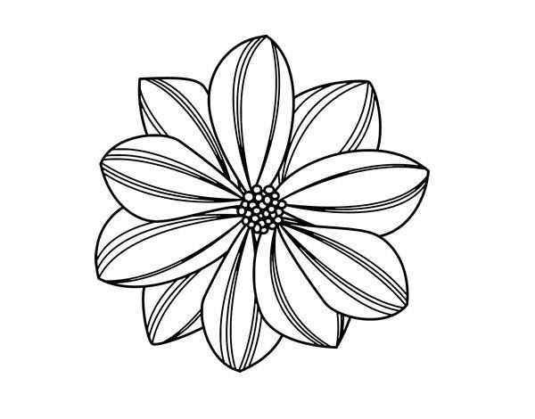 Dibujo de Flor de margarita para Colorear | Dibujos de ...