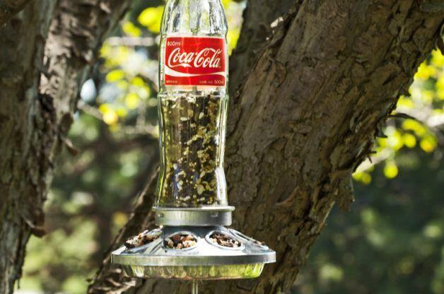 Soda Bottle Homemade Bird Feeder - Birds and Blooms