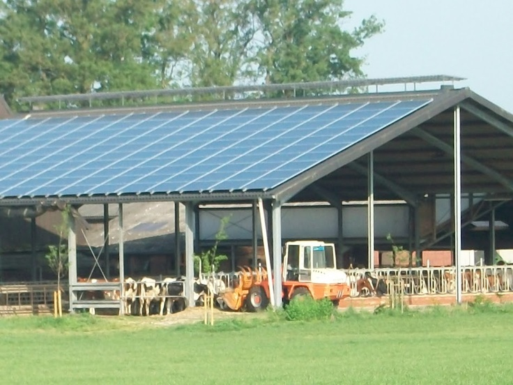 #SolarPanels are great in agricultural environments, too! #energy www.solar-enles.co.uk