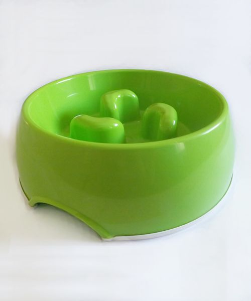 DOGMA SLOW FEED BOWL - GREEN. Available from www.nuzzle.co.za