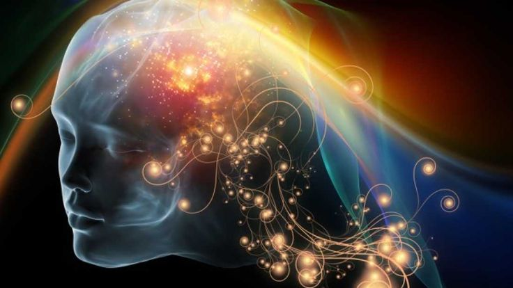 529 Could You Transfer Your Consciousness To Another Body?