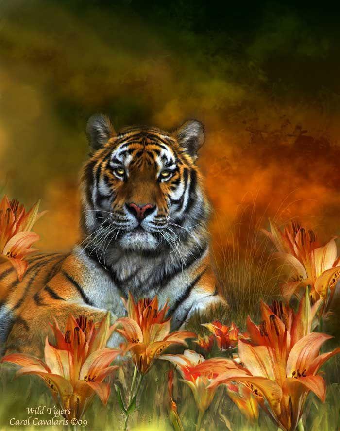 Beautiful painting...Wild Tigers