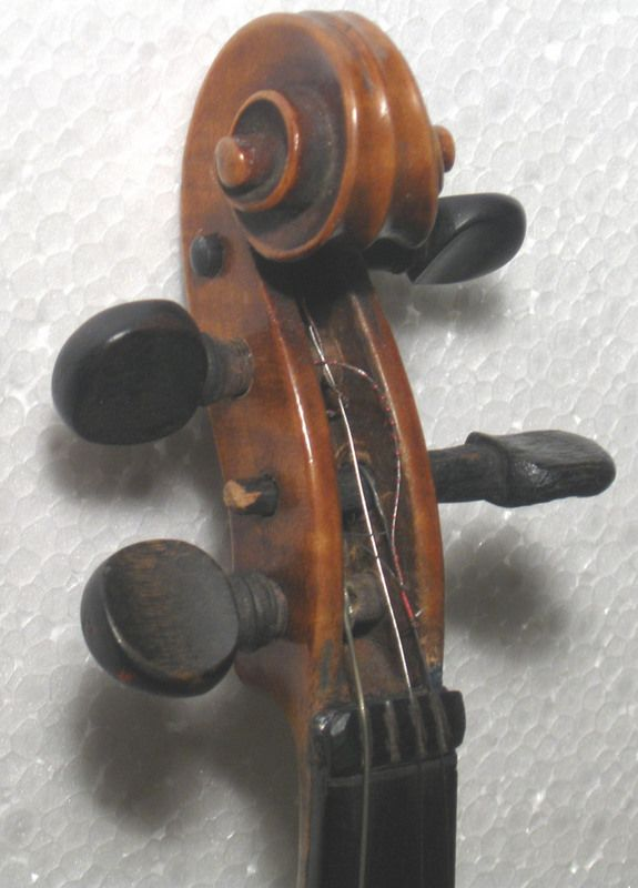In casa di Enrico Salvetti Violinista popolare