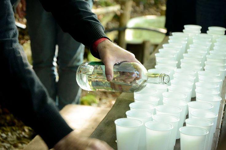 Fête de l'Absinthe 2015 at Boveresse, Val-de-Travers, Switzerland. Absinthe tasting at a secret absinthe fountain in the forest.