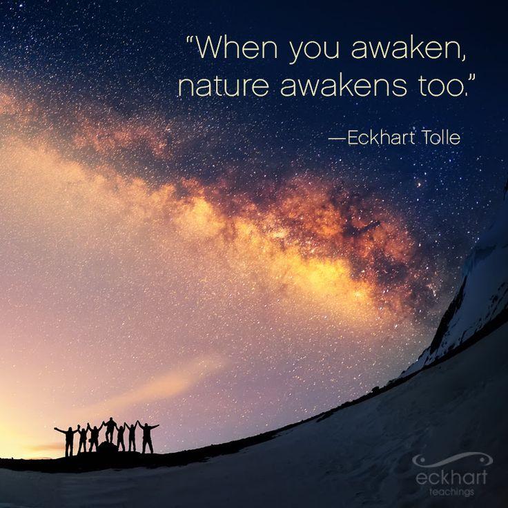 Cuando tú despiertas la naturaleza también lo hace #pildorarojaparatuser #presentmomentreminder #eckharttolle