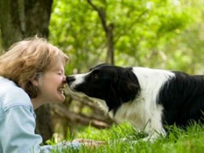 The Training of Will A powerful memoir by Internationally renowned Dog Behaviourist Dr Patricia McConnell www.hugoandotto.com