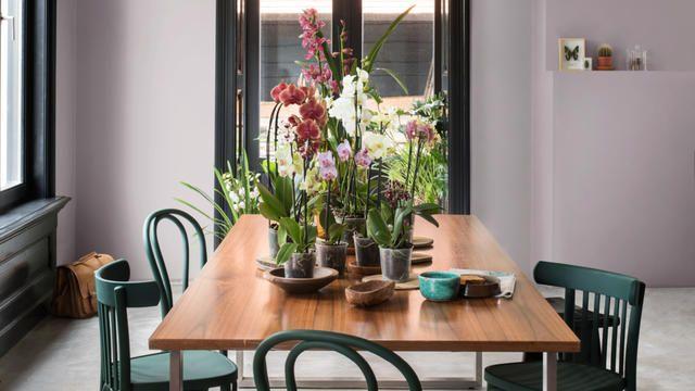 Lila kamer met groene stoelen. Slimme verftechnieken kunnen je helpen om oude meubels te 'upcyclen' zodat ze bij je lifestyle aansluiten.