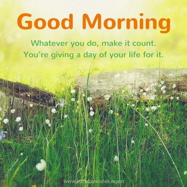Good Morning. Whatever you do, make it count. You're giving a day of your life for it.