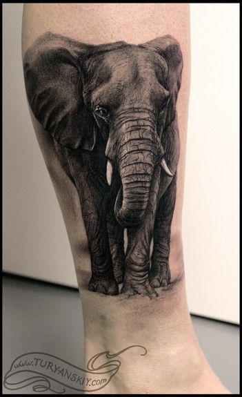 realistic elephant tattoos - Google Search