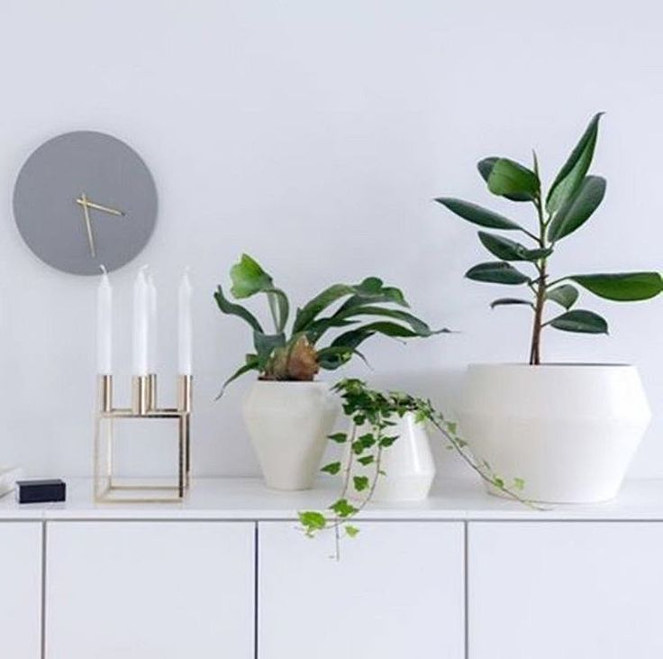 Our Rimm vases and flowerpots are perfect to mix and match for a personal styling with fresh green plants as seen in this image by @piiakalliomaki.⠀⠀ .⠀⠀ #rimm #bylassenrimm #flowerpot #vase #botanic #plants #flowers #bylassen #interior #interiør #functionalism #design #interiordesign #scandinaviandesign #danishdesign #nordicdesign #designclassic #apartmenttherapy #nothingisordinary #petitejoys #bylassenconceptstore #holbergsgade20 #copenhagen