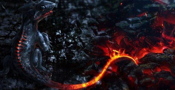 Саламандра огненная ящерица