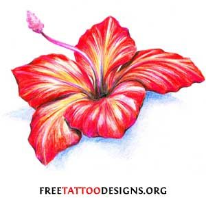 hibiscus flower tattoos | The Hibiscus is also a popular tattoo flower.