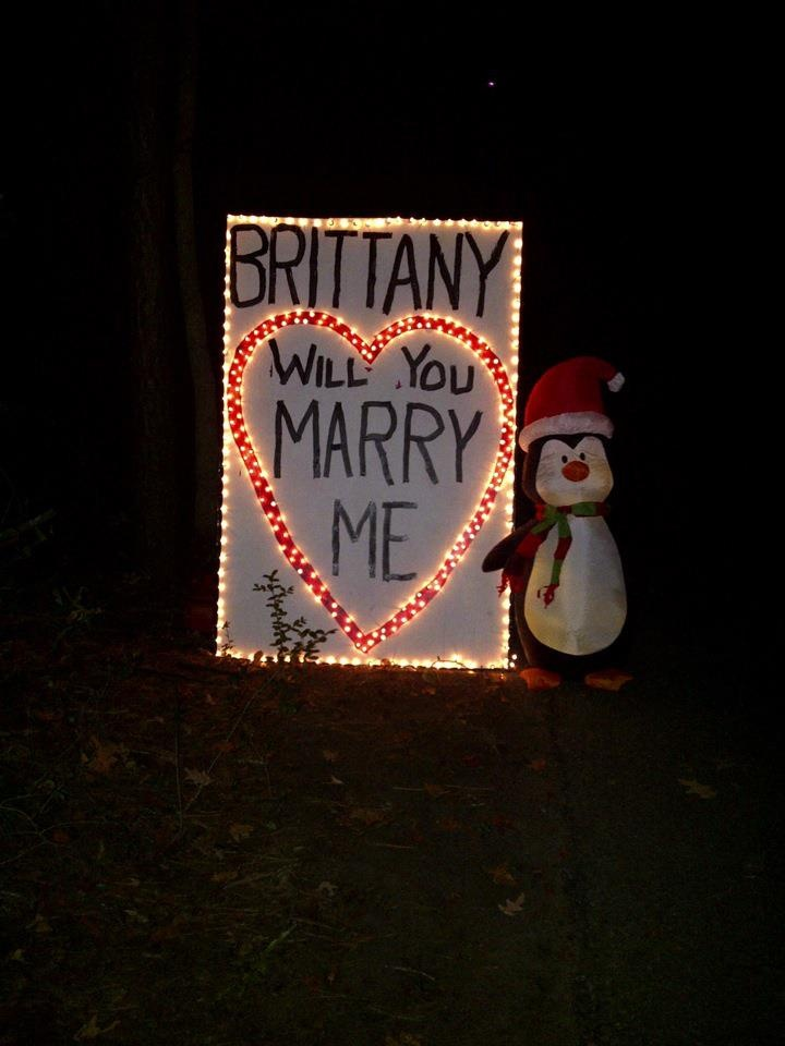 How My Fiance Proposed Made A Sign At The Christmas Light Festival For Everyone To See