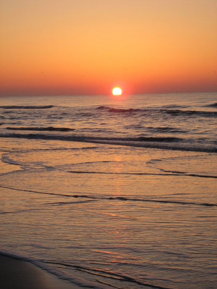 17 best images about i love sea pines sc on pinterest for Red fish bluffton sc