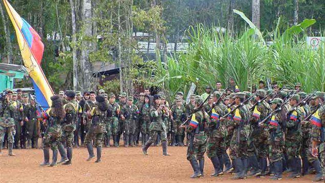 Las FARC consideran que ataques del ejército son un retroceso para las negociaciones de paz