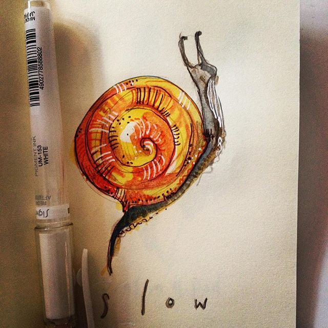 Inktober. Slow. Day 24. Snail. #inktober2016 #drawing #slow #snail #irishillustrator #igersdublin