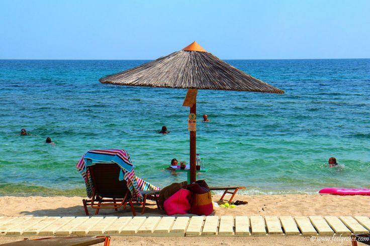 Styladario, Sithonia - sandy beach with beach bar