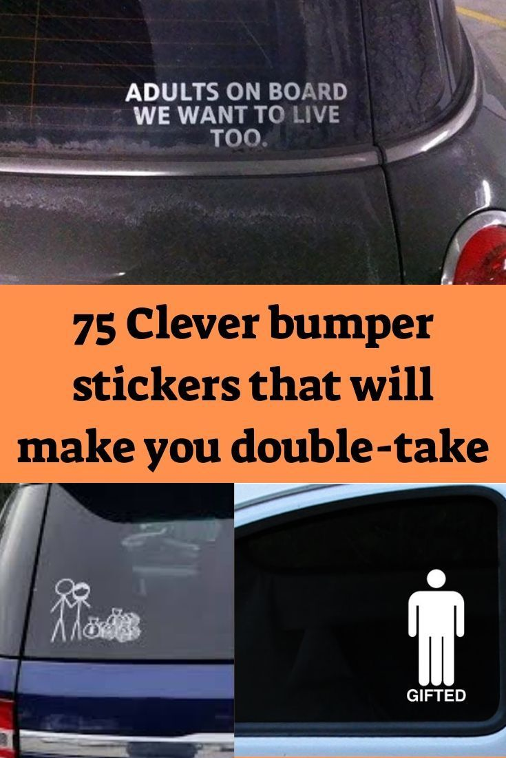 75 Clever Bumper Stickers That Will Make You Do A Double Take Clever Bumper Stickers Bumper Stickers Funny Bumper Stickers [ 1102 x 735 Pixel ]