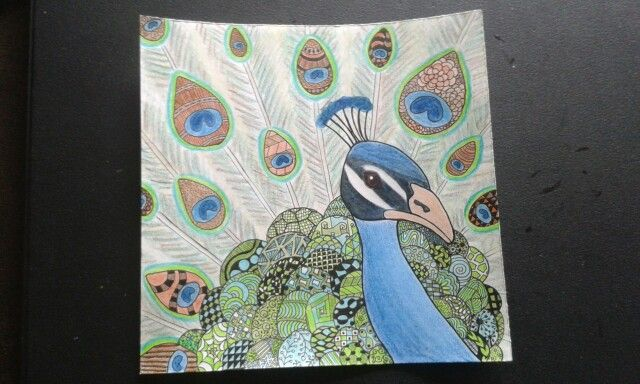Zentangle peacock
