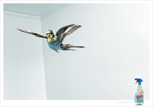 Very-Funny-And-Creative-Ads-Using-Animals-29-640x447