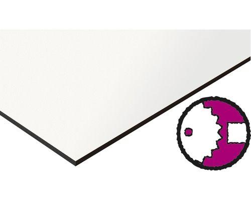 Kompaktplatte Weiss 2440x1220x6 Mm Zuschnitt Online Reservierbar Und Weitere Sortimente Aus Dem Bereich Mobelbauplatten In 2020 Carports Online Fassadenverkleidung