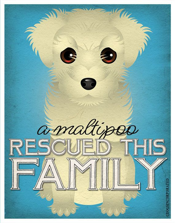 A Maltipoo Rescued This Family 11x14  Custom by DogsIncorporated, $24.00