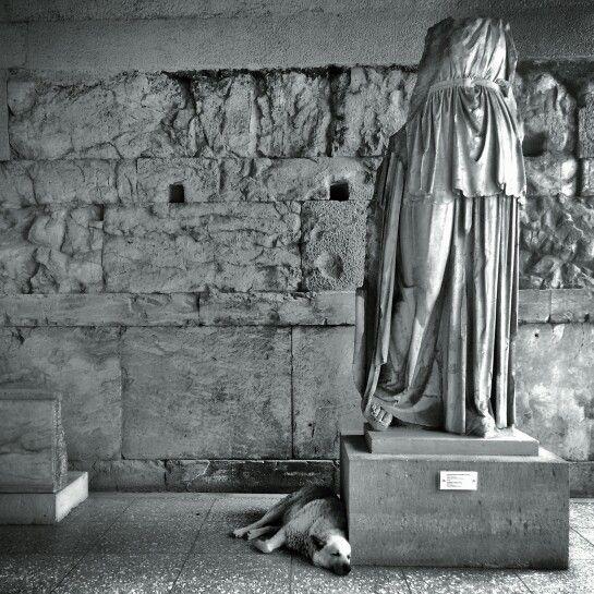 Athens Agora. The statue's pet.