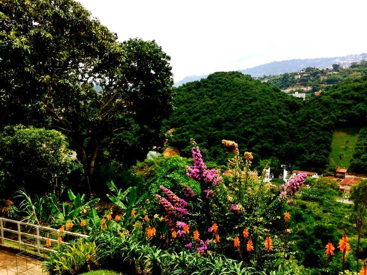 Jardín casa en Lomas del Mirador