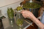 Green Beans: Gardens Ideas, Gardens Green Beans, Canning Recipes, Southern, Food Kitchens, Preserves Food, Gardens Food, Canning Preserves Jelly, Cans Cans