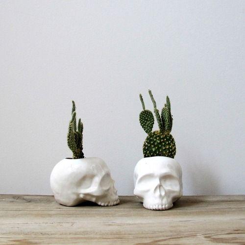 cactus & skulls ... ultimate favs