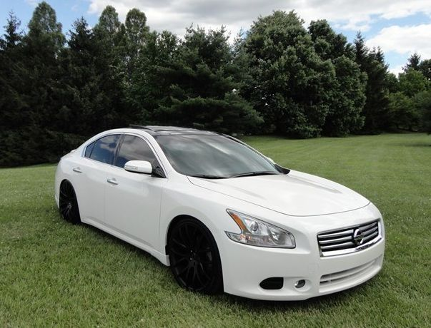 Modified Nissan Maxima (7th generation, A35) 4-door sedan with pearl white paint, front fog lights, HID Xenon headlights, Sport Grille.  http://www.101modifiedcars.com/2013/05/07/modified-nissan-maxima-7th-generation-a35/