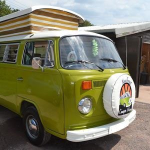 Dino - New Forest VW Camper Hire