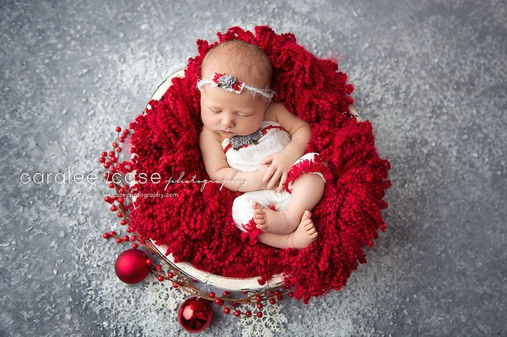 Caralee Case Photography ~ Idaho Falls Newborn Infant Baby Photographer.  Christmas baby.  Newborn Pictures.  Baby girl.  Red.  Holiday.  Berries.  #newbornphotography #christmasbaby