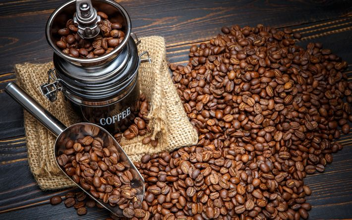 Download wallpapers Coffee beans, cup, coffee mill, morning, coffee