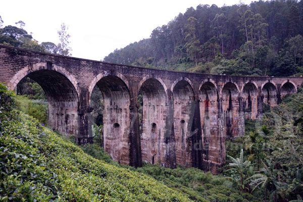 Tourists at Nine Arches Bridge - Daily Mirror - Sri Lanka Latest Breaking News and Headlines