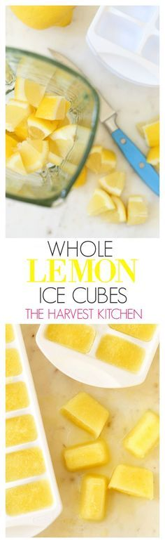 These Immune Boosting Whole Lemon Ice These healthy Whole Lemon Ice Cubes pack a big nutritional punch, and great flavor when added to a glass of water, juice blends, smoothies, soups and sauces. @theharvestkitchen.com