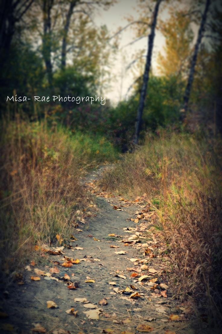 Nature Wallpaper Editor: Beautiful Fall Day