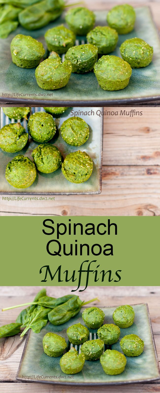 "Spinach Quinoa Muffins - Life Currents I'd like to call these ""Oscar The Grouch Muffins"". Green and kind of gruff looking, but ultimately lovable and yummy!"