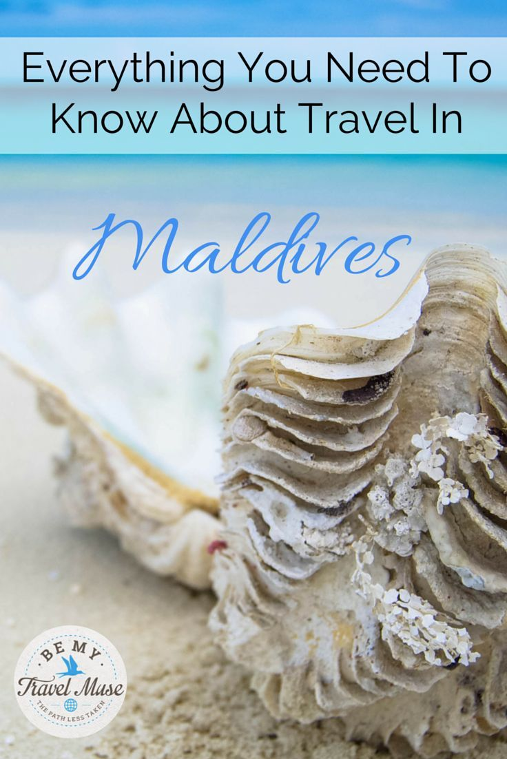 Everything you need to know about visiting the Maldives on a budget, how to have a local experience, and where to stay. These tips will help you have the vacation of a lifetime!
