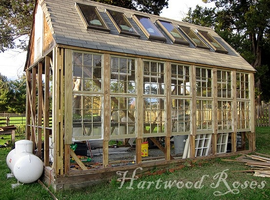 Lovely glass greenhouse: Green Houses, Amazing Greenhouses, Hartwood Rose, Greenhouses Ideas, Window Greenhouses, Homemade Greenhouse, Old Window, Greenhouses And Pots Sheds, Diy Greenhouses Doors