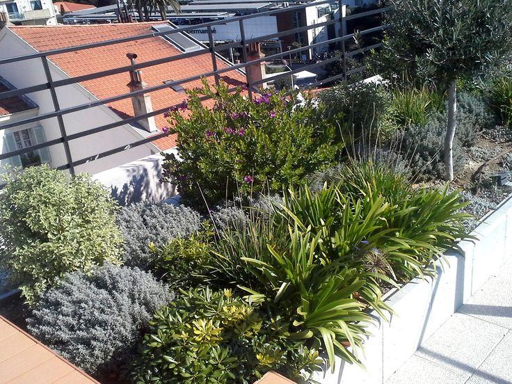 Toi terrasse d'un hôtel à Cannes. Nous avons mis en place la partie paysager de ce toit terrasse. Une ambiance zen et chaleureuse dans un univers moderne et contemporain.