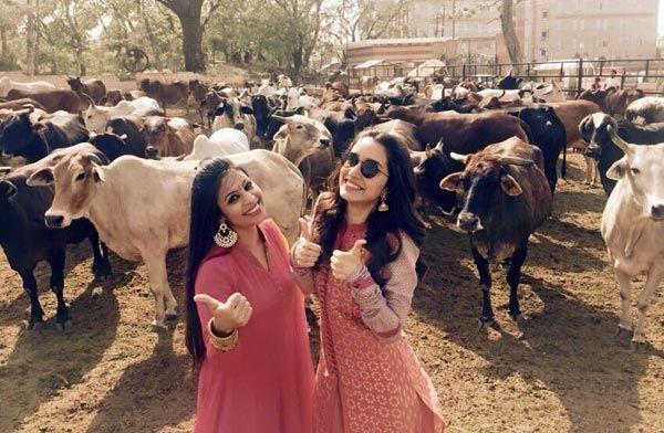 Shraddha Kapoor's day of fun after the Braj Mahotsav