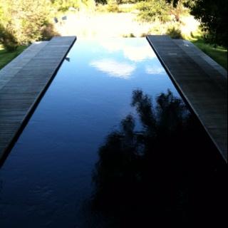 Swimming pool of life